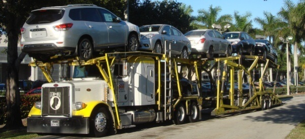 cars on transport truck
